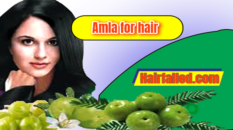 Amla recipes for hair