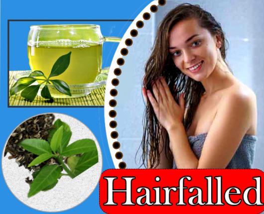 green_tea_for_hair